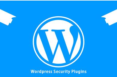WorPress Plugins