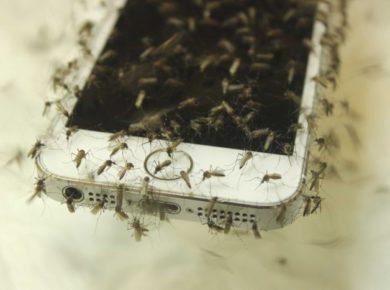 Mosquito Repellent App